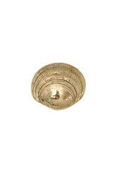 διακοσμητικό δώρο γραφείου σπιτιού, πρες παπιέ, από ορείχαλκο, αχιβάδα γυαλιστερή / 2ΔΙ0296